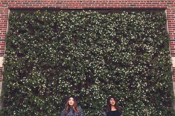 greenery wall photo