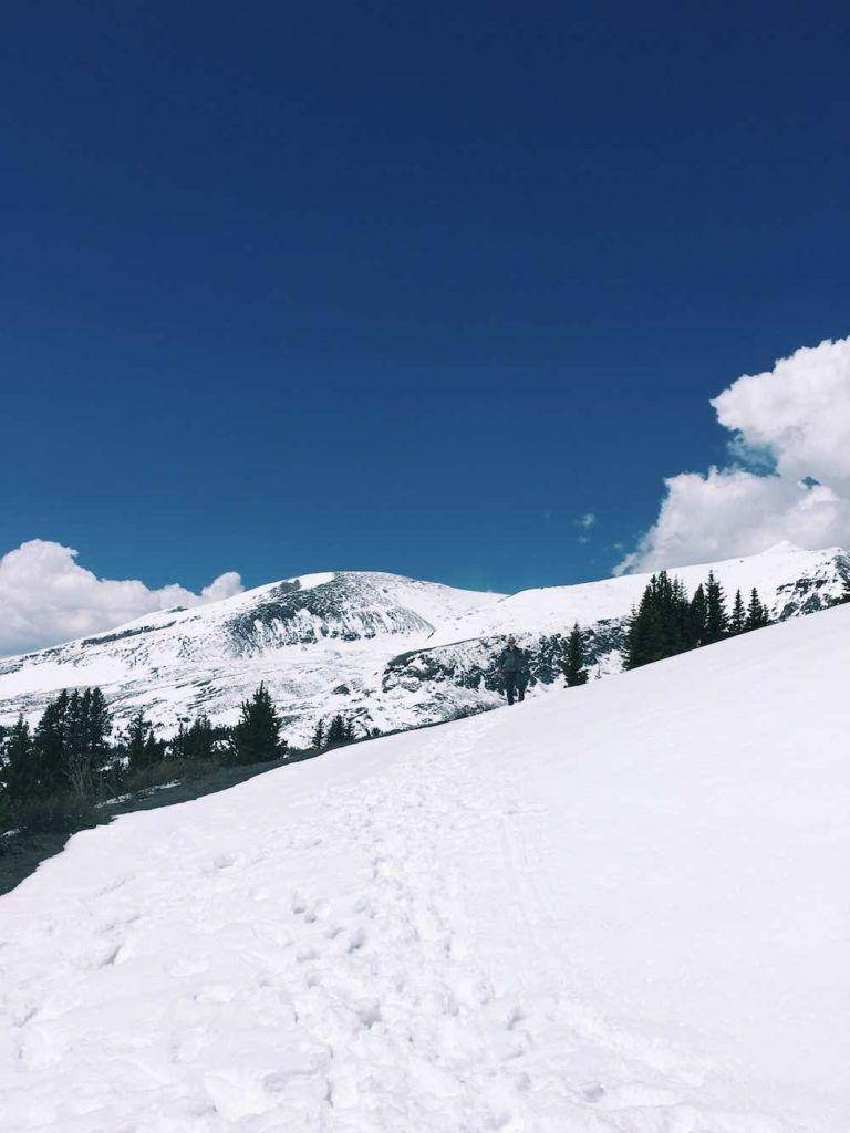 Breathtaking Snowy Views