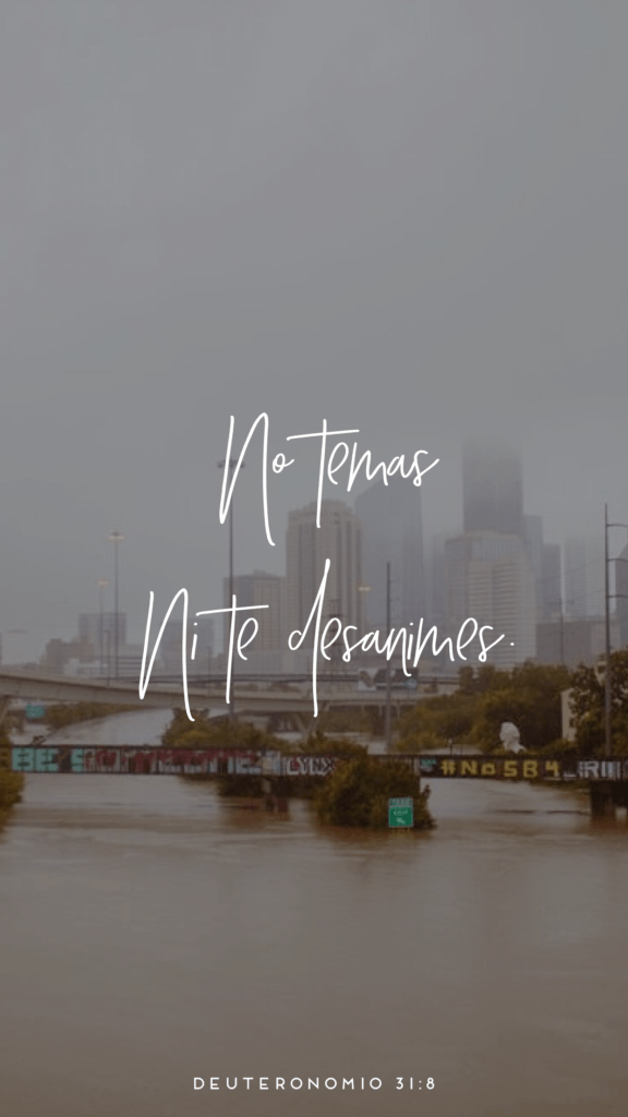Love And Tacos Hurricane Harvey Inpirational Wallpaper--No Temas