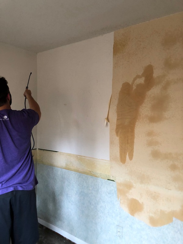 How To Remove Wallpaper - DIY 16